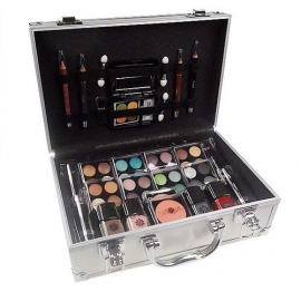 2K - Silver Beauty Train Case two meigikohver